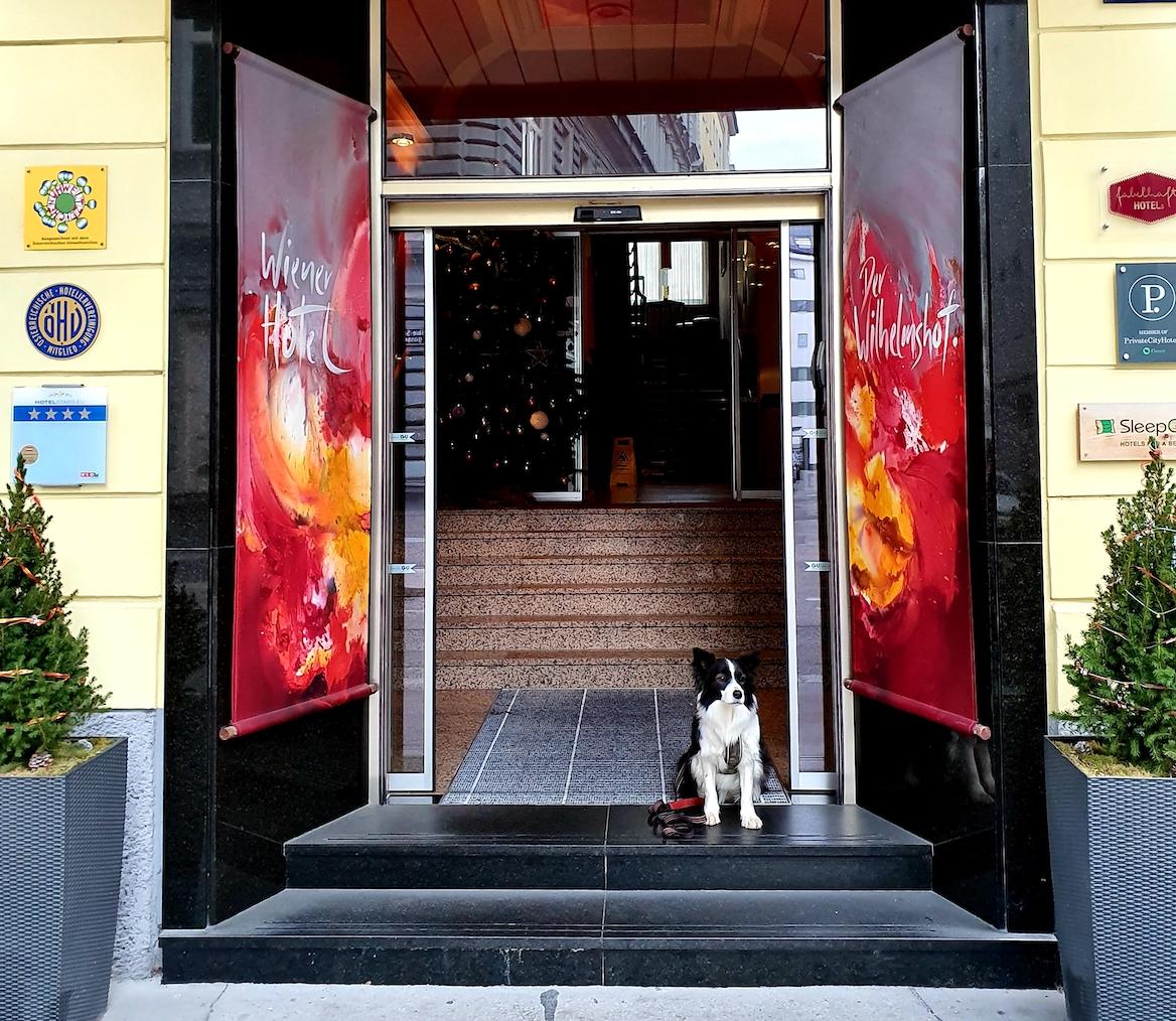 Dogfriendly Check: Hundefreundliches Hotel in Wien (2. Bezirk, Praterstern)