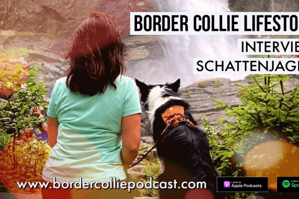 Der Schatten jagende Border Collie – LIFESTORY INTERVIEW