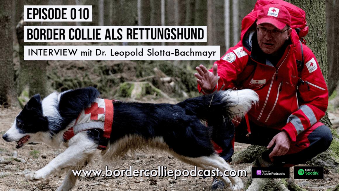 Der Border Collie als Rettungshund – Podcast Interview